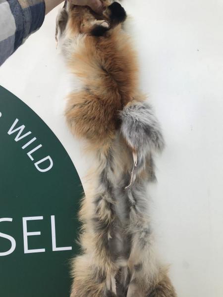 Fuchsmaske mit Nackenstück und Seitenrändern, ohne Branten und Lunte